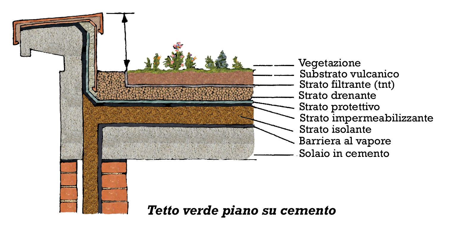 Tetti piani green estudio de proyectos edilicios for Piani di struttura esterna